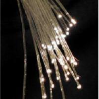 bf20052