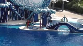 Sea World in Orlando