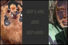 Deep house soul  dj lepoulpe oo11