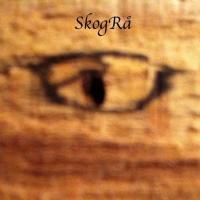 SkogRå*ॐ(ex DJ Psy aka Tarantula)