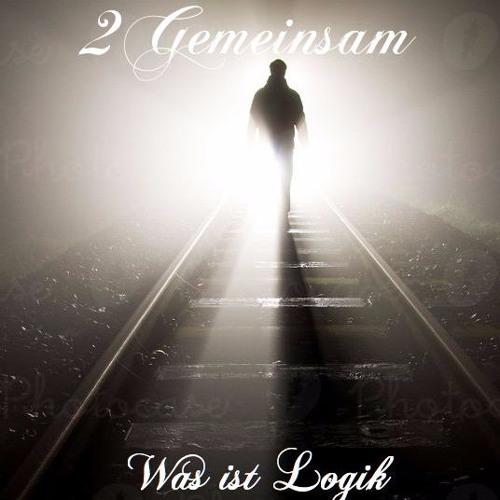 Was ist Logik by 2Gemeinsam(Official)