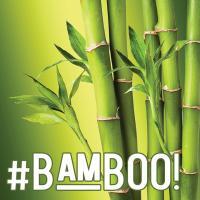 #BAMBOO!