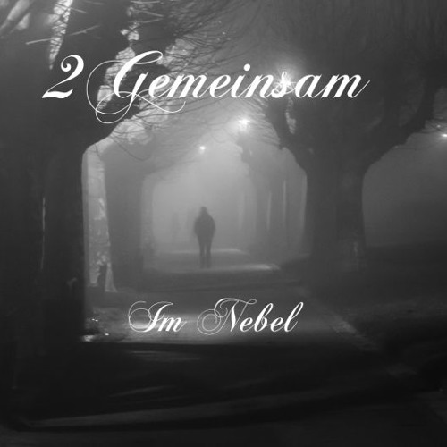 Im Nebel by 2Gemeinsam(Official)