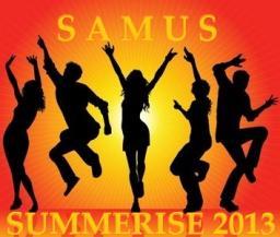 Summerise 2013