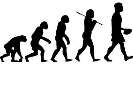 Evolution Vol1
