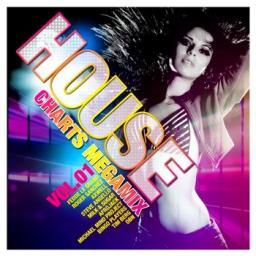House Mega Mix Vol 2 (Dj Spike Mashup)