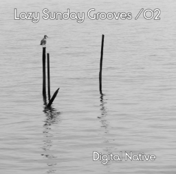 Lazy Sunday Grooves 02
