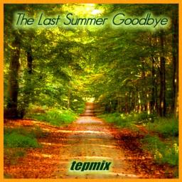 The Last Summer Goodbye