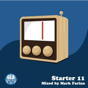 13   Starter 11
