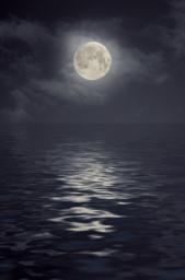Midnight Mood Vol.0