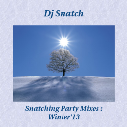 Snatching Party Mixes - Winter '13