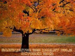 Bassinjector B2B Marley Vol.2