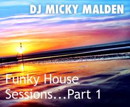 Funky House Sessions....Vol. 1