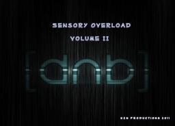 Sensory Overload Volume II