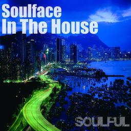 Soulface In The House - Soulful Vol27