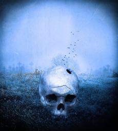 The Requiem Dream