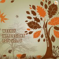 Weekly Impressions 2014 vol.6