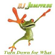 Turn Down For What ( Jumpfrogs Smashup )