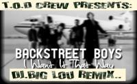 BACKSTREET BOYS-I WANT IT THAT WAY-(DJ.BIG LOU REMIX)-CLASSIC POP/HIP HOP FLAVA..