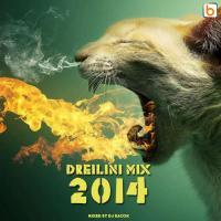 Dreilini Mix 2014 [video]