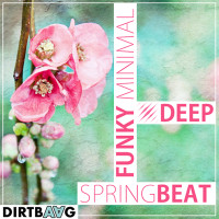 • Minimal House Star 3 • SPRINGbeat special edition