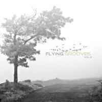 Flying Grooves Vol 3