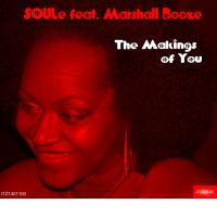 The Makings of You (Remixes)