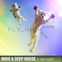 FLY HIGH 010