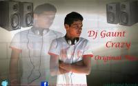 Dj Gaunt Crazy (Version Promo)