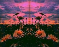 Spring Bliss Vol. 1