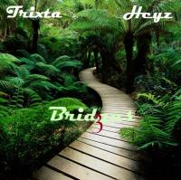 Bridges vol.3
