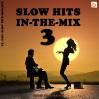 Slow Hits in-the-mix vol.3