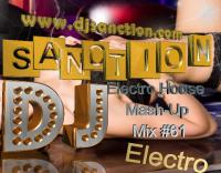♫ Best ★ Electro House ★ Top Mashup Mix #61 ★ 06.17.2015 ★  by DJSANCTION ♫