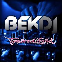 Tomorrowland 2015 - Warm Up Festival Mix