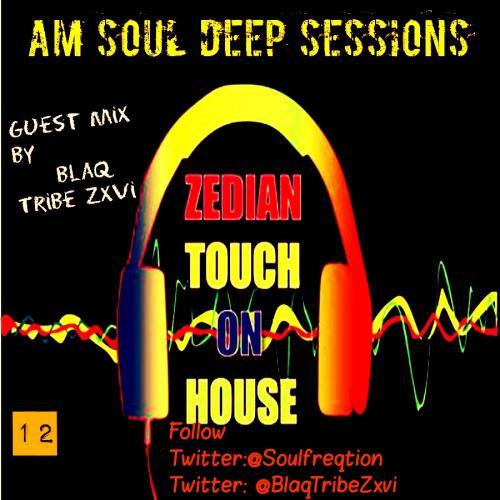 AM SOUL DEEP EP 12