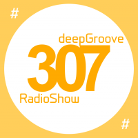deepGroove Show 307