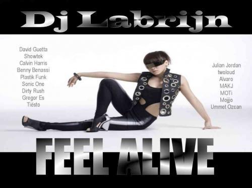 Dj Labrijn - Feel Alive