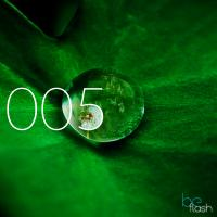 Liquid - 005