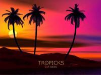 Tropicks C