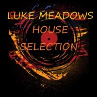 Volume 222 - Luke Meadows House Selection