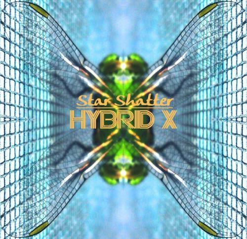 Hybrid X