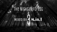 The Night in Forest 3