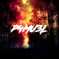 Bass House-Future Bass- Dubstep (P4mu3L Mix)