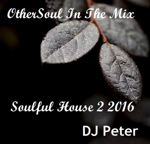 DJ Peter - OtherSoul In The MIX - Soulful House 2 2016