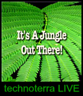its a JUNGLE out there - TECHNOTERRA ( live performance )