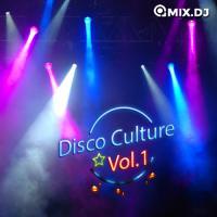 Disco Culture Vol.1
