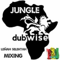 JUNGLE & DUBWISE MIXING by Leñah Selektah