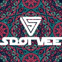 S Dot Vee - We Like To Groove - Vol 3