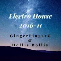 Electro House Mix 2016-11