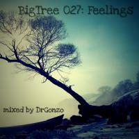 BigTree 027: Feelings (2016.12.28.)
